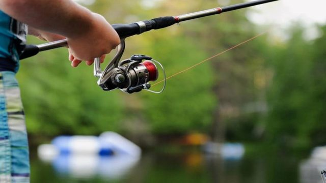 Best Fishing Line Buying Guide in 2019-10bestsells